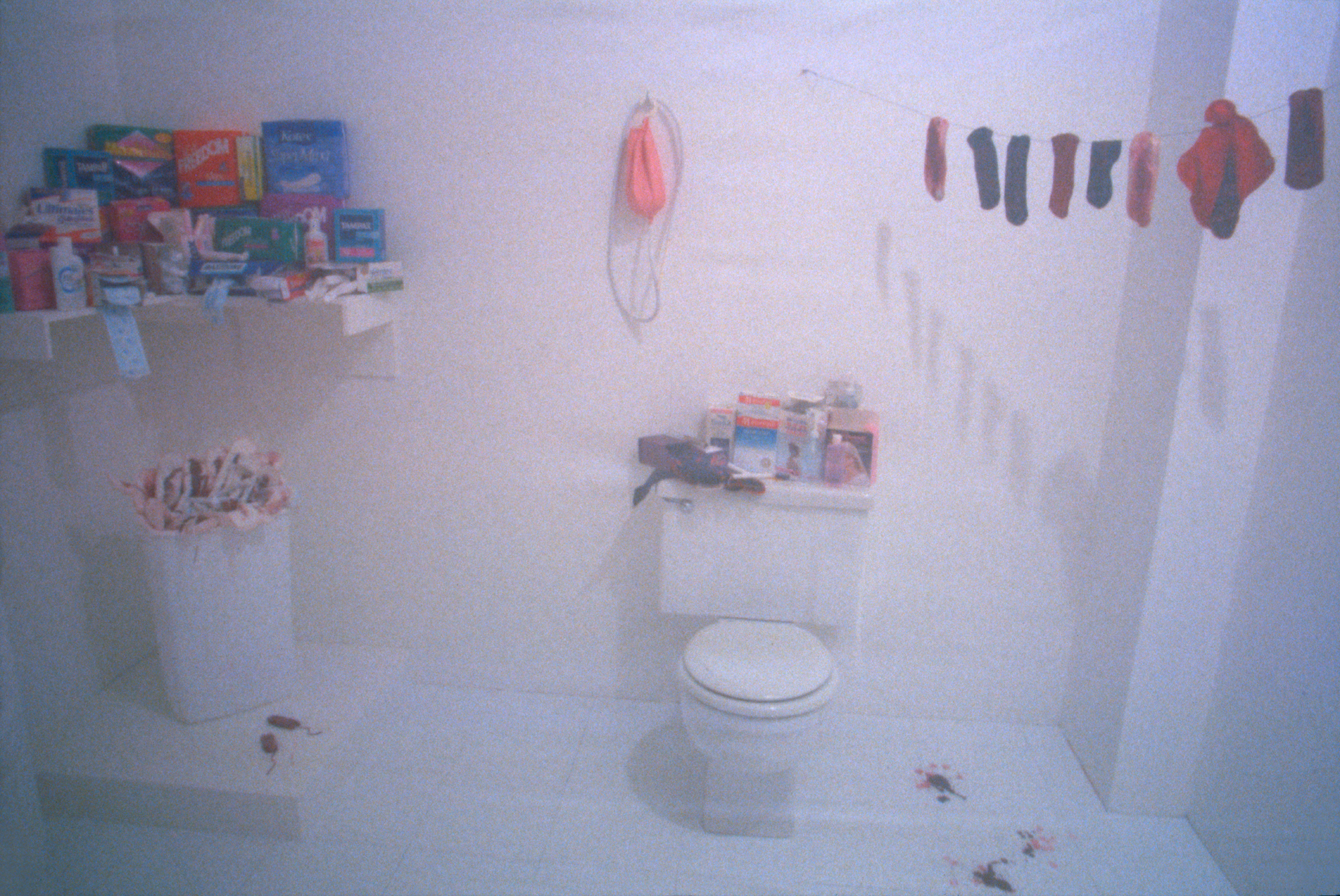 Judy Chicago  Menstruation Bathroom  1995  mixed media  reinstallation at  LAMOCA of 1972 Menstruation Bathroom from Womanhouse  1995    Judy Chicago. Selected work   Judy Chicago