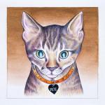 Kitty City 10871_Detail_Pete