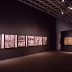 Holocaust Project installation5